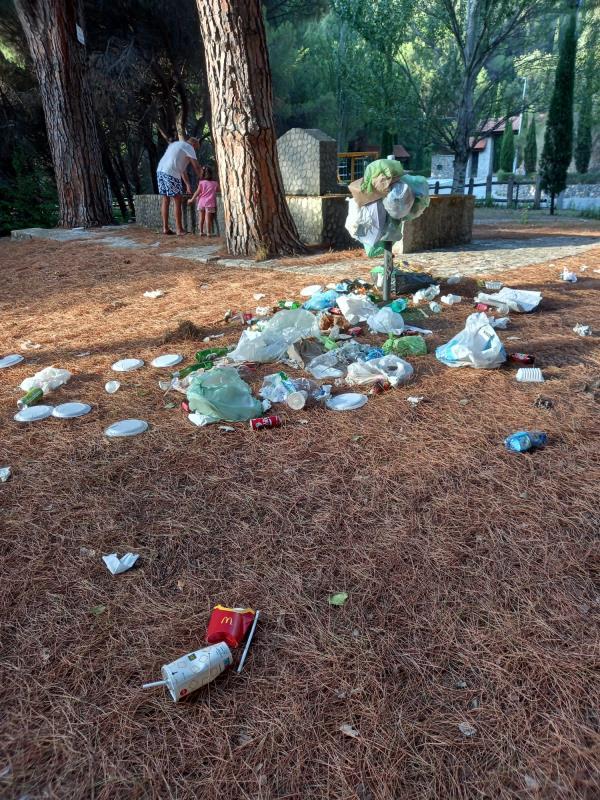 images La Pineta di Siano invasa dai rifiuti: la denuncia di Cristina Rotundo (Fare per Catanzaro)
