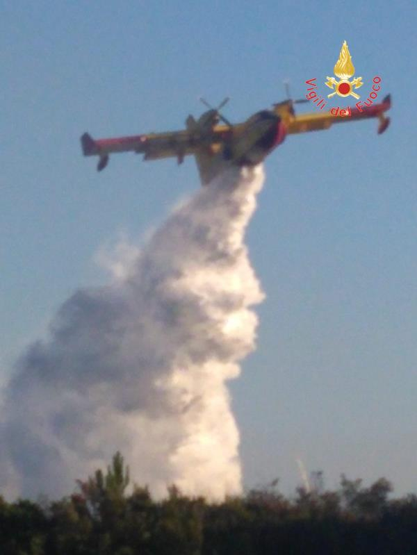 images Macchia mediterranea in fiamme a Caminia