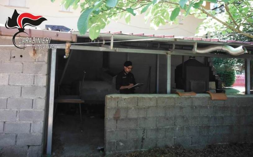 images San Giorgio Morgeto: costruisce  una veranda nel Parco, denunciato