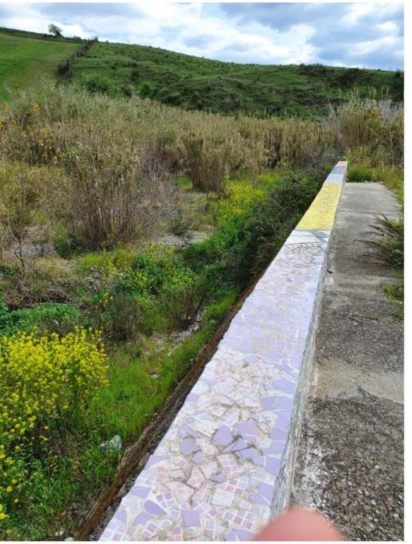 images Catanzaro. Silipo (CalabriaOltre) chiede la bonifica (seria) del torrente Castace