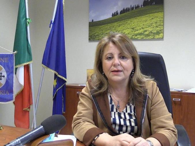 """images Blue Air annuncia l'avvio della nuova rotta Reggio Calabria-Torino. Catalfamo: """"Passo verso il rilancio"""""""