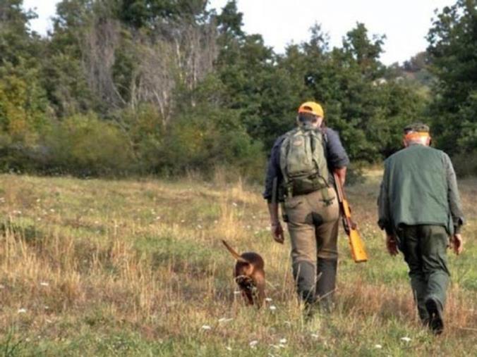 images Ordinanza di Spirlì. Ripartono la caccia ai cinghiali e la pesca sportiva