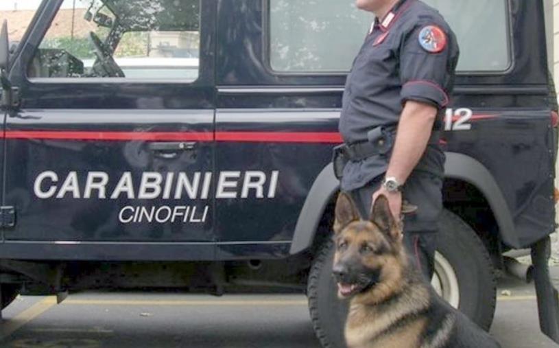 images Blitz antidroga a Crotone: 11 arresti
