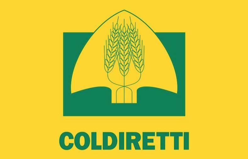 """images Coldiretti Calabria: """"Clima Pazzo, primavera e primizie in anticipo. Una malaugurata gelata può far perdere il raccolto e il lavoro di un anno"""""""
