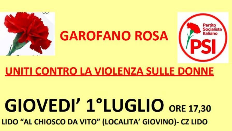 """images """"Uniti contro la violenza di genere"""": giovedì l'associazione Garofano Rosa ne parla a Giovino"""