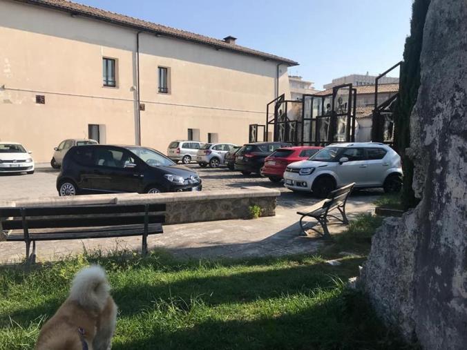 """images Catanzaro. """"Furbetti dei parcheggi"""", Corsi: """"Abramo chiarisca se ci sono posti auto esclusivi per qualche protetto dell'amministrazione comunale"""""""