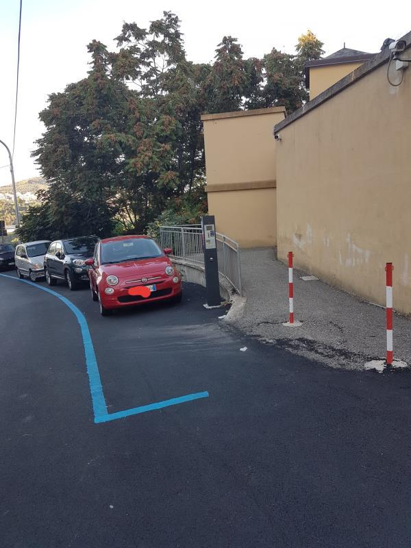 """images Catanzaro. Un lettore segnala: """"Su Via Italia troppe strisce blu, anche dove non 'previste',  e nessuna bianca"""""""