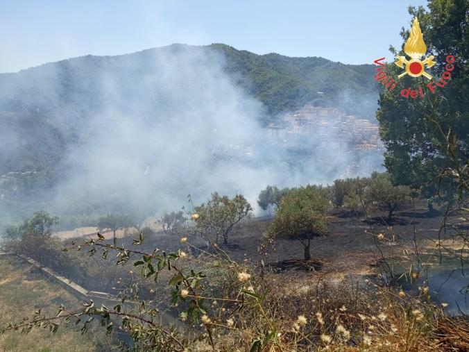 images In fiamme un ettaro di bosco a Taverna