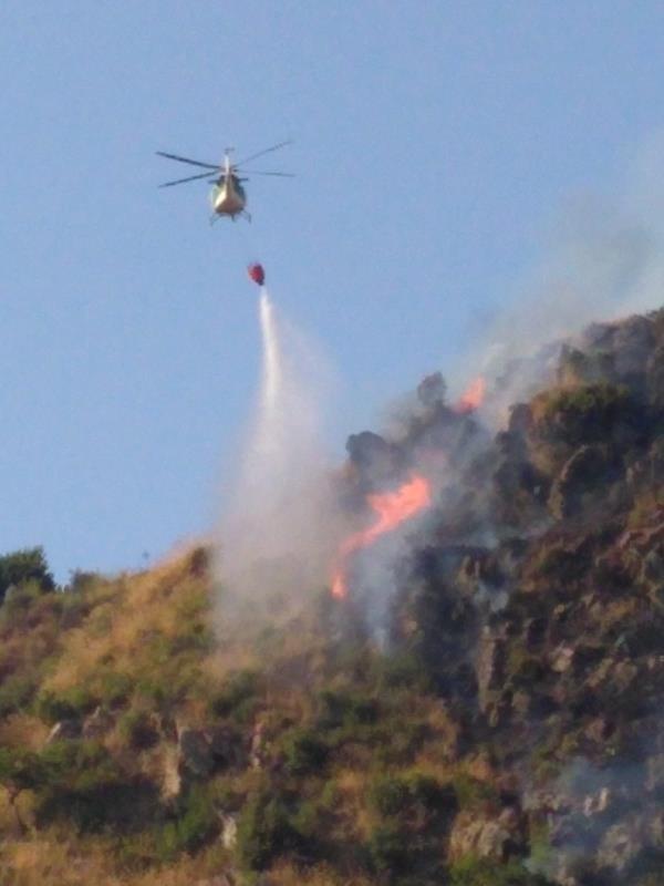 images Vasto incendio a Gimigliano. In fiamme la macchia mediterranea