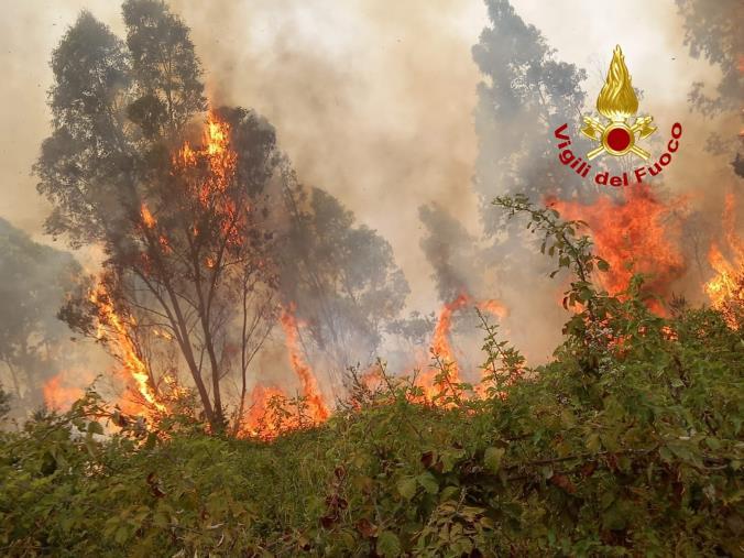 images Gizzeria. Vasto incendio fra gli arbusti si dirige verso le abitazioni interne