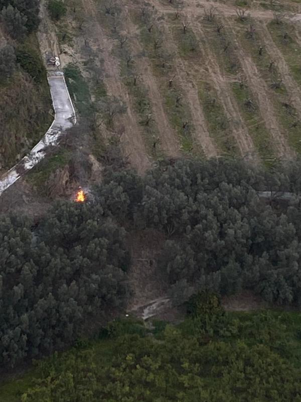 images Appicca un incendio che distrugge tre ettari di macchia mediterranea, denunciato