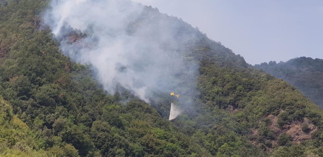 images Riserva Valli Cupe. Nella notte incendio nel sentiero del Crocchio: ora è chiuso ai visitatori. Indagano i carabinieri