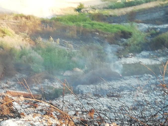 images Vasto incendio ad Isola Capo Rizzuto, minacciate alcune abitazioni (VIDEO)