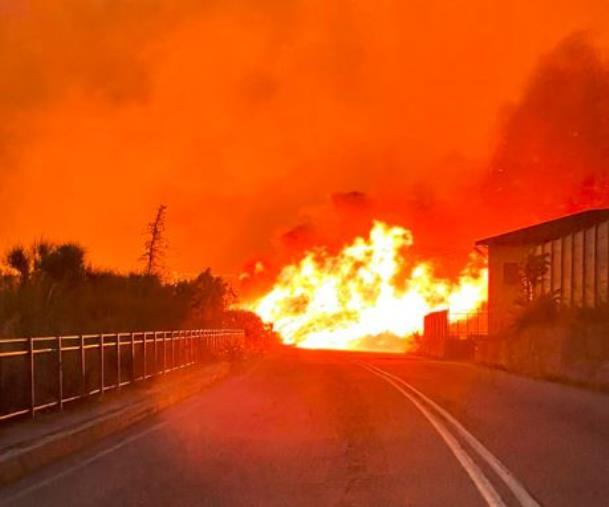 images Catanzaro in fiamme. Aumenta il numero degli evacuati a Siano: roghi in più punti