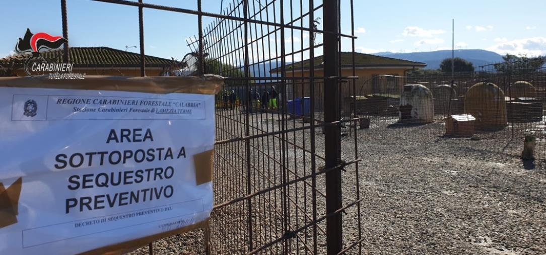 """images Lamezia Terme: sequestrato il canile comunale in località """"Stretto"""""""
