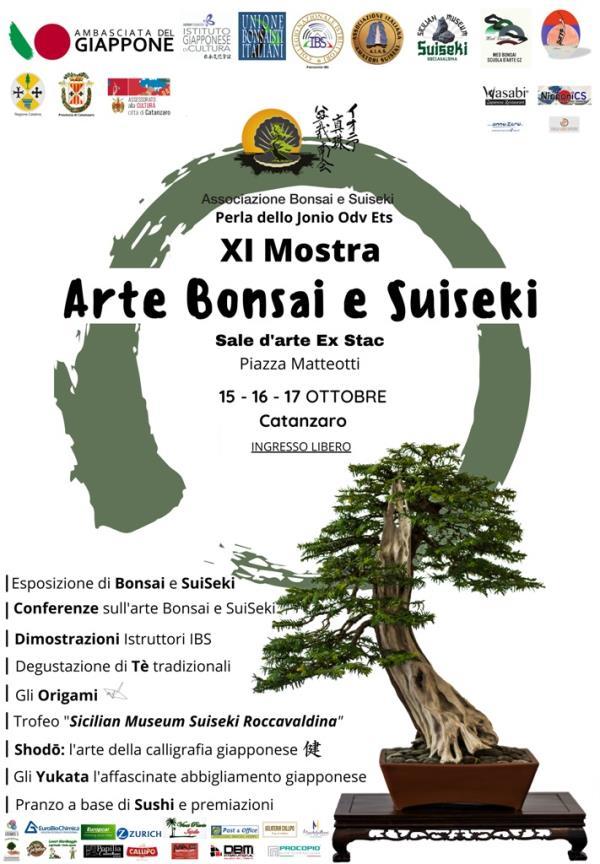 """images Catanzaro, l'assessore Cardamone: """"Tre giorni con l'arte del bonsai animeranno il centro storico"""""""