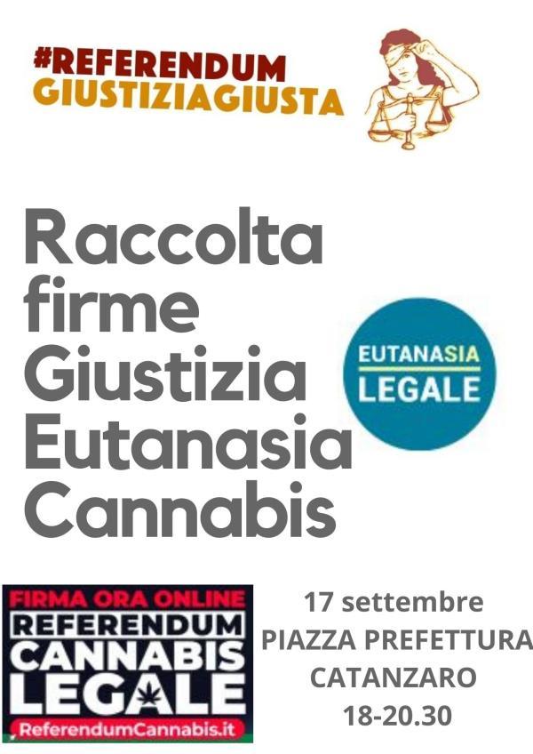 images Giustizia, eutanasia, cannabis: venerdì a Catanzaro la raccolta firme