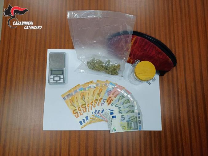 images Droga, nei guai un 20enne e un 40enne di Amaroni trovati con la marijuana: uno in manette e l'altro ai domiciliari