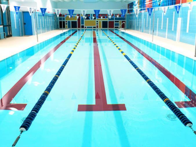 images Nuoto, dalle società calabresi solidarietà e allenamenti da casa per tutti