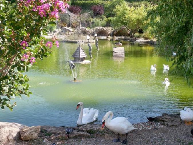 """images Parco Biodiversità, Traversa: """"Non è al riparo da rischi a causa delle scarse risorse"""""""