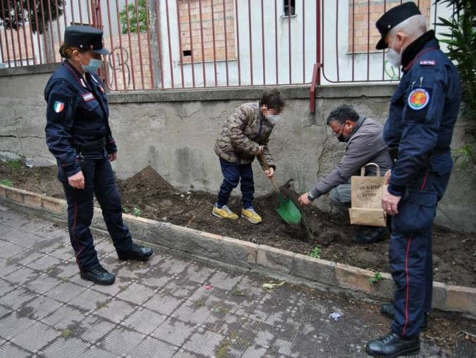 """images Progetto di educazione ambientale """"Un albero per il futuro"""": i carabinieri della Biodiversità di Reggio Calabria piantano un albero davanti all'IC Carducci"""