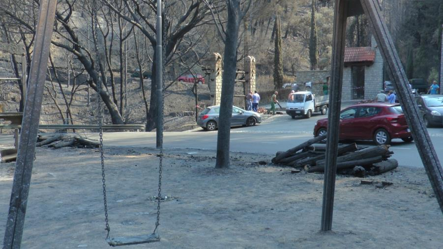"""images Incendio Pineta di Siano. Prima stima dei danni: """"Colpiti 10 ettari su 280"""""""