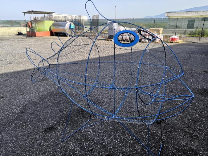 images Il Comune lancia il progetto per spiagge plastic free