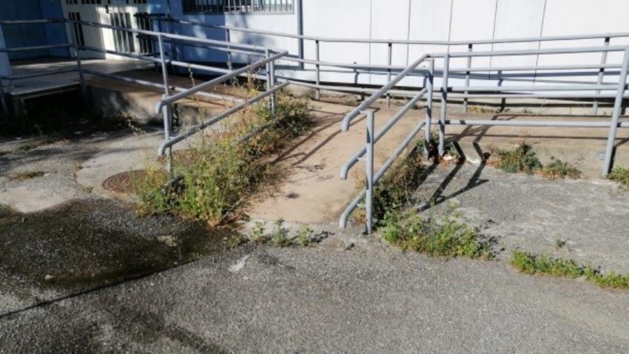 """images Catanzaro. Santise (I Quartieri): """"Il degrado ricomincia nelle scuole"""" (FOTO)"""