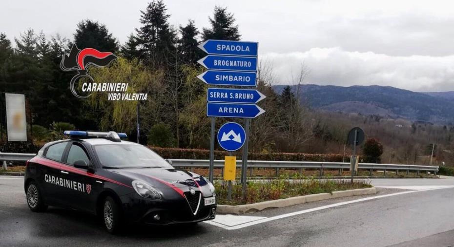 images Asporta la rete di recinzione dell'autostrada allo svincolo A/2 Vazzano, arrestato