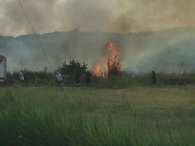 images Bruciano sterpaglie nell'area del quartiere Barone a Catanzaro. Fiamme lambiscono la strada