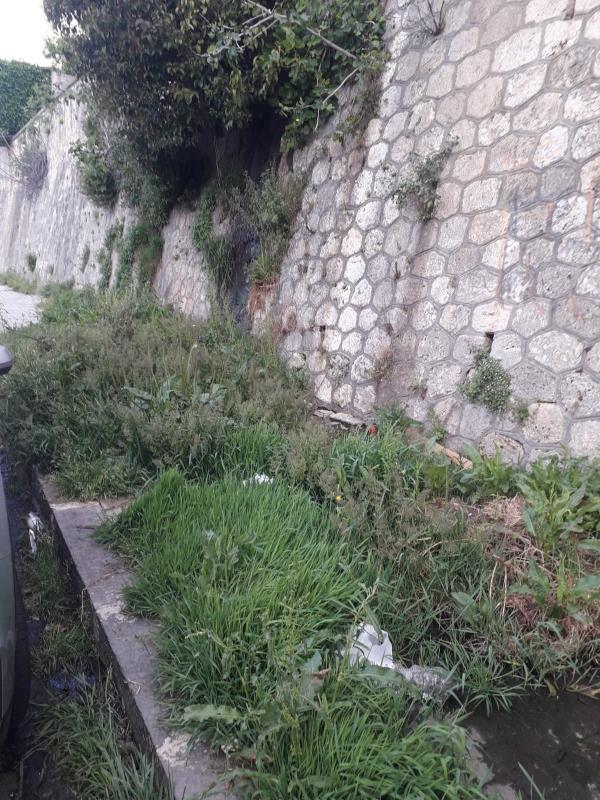 """images Catanzaro. Il consigliere comunale Pisano su via stretto Cappuccini: """"I settori gestione del territorio e ambiente intervengano"""""""