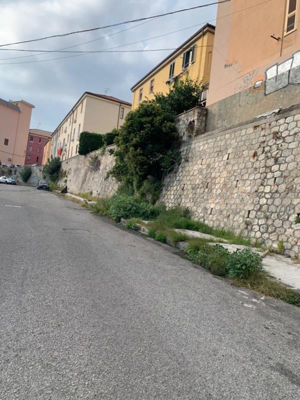 images Catanzaro. Fogna a cielo aperto in via Stretto Cappuccini, la denuncia dell'Associazione Sud Democratici