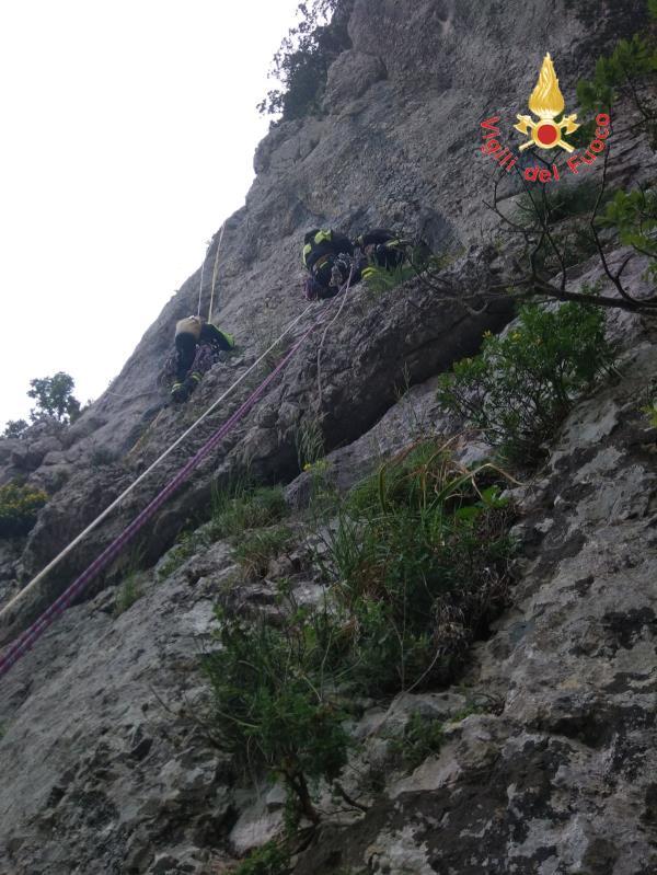 images Anche i vigili del fuoco calabresi alla ricerca dell'escursionista francese disperso in Cilento